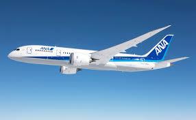 キャロット3がANA(全日本空輸株式会社)様の貸出用アシストシートに採用されました。